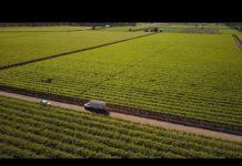 Nông nghiệp chuyển động: Ứng dụng công nghệ 4.0 trong sản xuất nông nghiệp