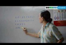 Xem Ngay Bài 1: Bảng chữ cái tiếng Pháp – Les lettres de l'alphabet (Phần 1)