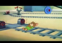 Xem Tom and Jerry funny new episode2019