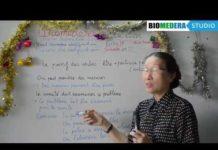 Xem Ngay Bài 22: Thể bị động trong tiếng Pháp (2) –  Le passif des verbes