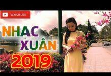 Nghe Nhạc Xuân 2019 – Liên Khúc Nhạc Nghe Tết Kỷ Hợi Hay Mê Mẩn – MC Thanh Ngân Ft Võ Minh Lê