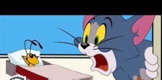 Xem Tom & Jerry | The Cricket Problem | WB Kids