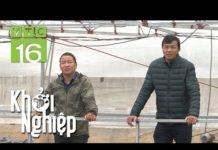Xem Khởi nghiệp nuôi tôm, nông hộ bất ngờ gặp sự cố – Khởi nghiệp 472   VTC16