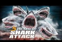 Xem Cá Mập 5 đầu || 5 Headed shark || phim kinh dị mỹ kịch tính,thót tim từng giây.