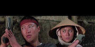 Xem Phim hành động võ thuật hay – Phi Ưng Việt Nam (1987) Thuyết minh – Hồng Kim Bảo