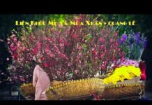 Nghe Tuyển chọn 3 bài nhạc xuân buồn hay nhất của Quang Lê
