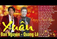 Nghe Nhạc xuân Đan Nguyễn & Quang Lê