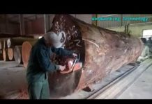 Công nghệ xẻ gỗ khủng /  Technology sawn wood