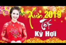 Nghe NHẠC XUÂN 2019 Hay Nhất – Album Xuân Yêu Thương | LK Nhạc Xuân Hải Ngoại Tuyển Chọn Hay Nhất