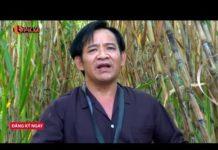 Xem Hài Tết Mới Nhất | Phim Hài Tết Quang Tèo, Giang Còi Mới Nhất