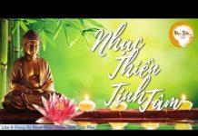 Xem Nhạc Thiền Tịnh Tâm – Bài Nhạc Thiền Hay Nhất, Nghe Là Tiêu Hết Buồn Phiền, Ngủ Ngon Và An Lạc Hơn