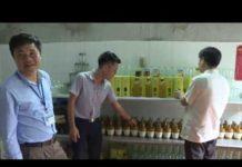Xem Thanh nien khoi nghiep tu Dong trung ha thao