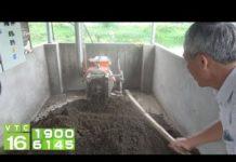 Công nghệ nuôi lợn thịt không xả thải | VTC16