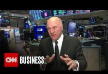Xem Why 'Shark Tank' star Kevin O'Leary likes Tesla, gold, and the Trump economy