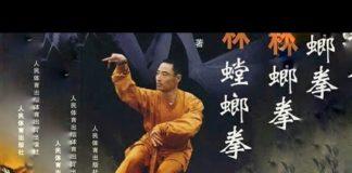 Xem Thiếu Lâm Bọ Ngựa Quyền || phim võ thuật đỉnh cao hay nhất mọi thời đại