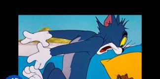 Xem Tom & Jerry | To Nap or Not To Nap | Classic Cartoon | WB Kids