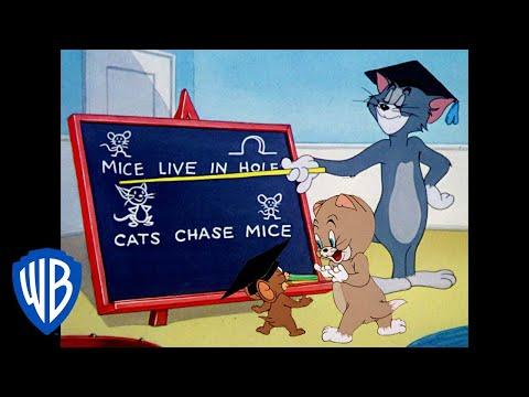 Xem Tom und Jerry auf Deutsch | Gelernte Lektionen | WB Kids