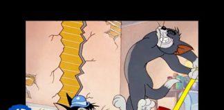 Xem Tom & Jerry in italiano   Classico Dei Cartoni Animati 19   WB Kids