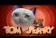Xem So, Tom and Jerry Chase