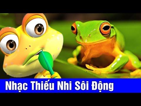 Xem Nhạc Thiếu Nhi Sôi Động Cho Bé ♫ Lu và Bun Phim Hoạt Hình Vui Nhộn 2020 – Chú Ếch Con, Đàn Gà Con ♫