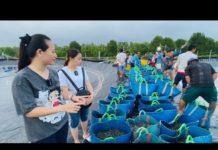 Trúng mùa tôm thẻ nuôi Công nghệ cao| Phan Diem Vlog trầm trồ với hàng tấn tôm của Ánh Kua ở Cà Mau