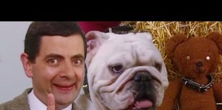 Xem Dog Show | Funny Clips | Mr Bean Official