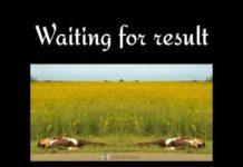 Xem Waiting for result | Mr.Bean | Tarasti hai nigahe, meri takti hai rahe teri.|Meme|😔|