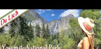 Travel California-Yosemite National Park-One day trip with family
